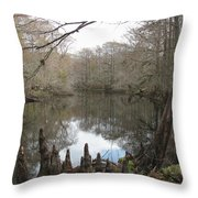 Withlacoochie In Winter Throw Pillow