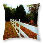 Wodden Fence  Throw Pillow