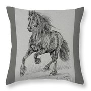Wobke 403 Sport Friesian Throw Pillow
