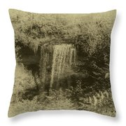 Wolcott Falls Throw Pillow by William Norton