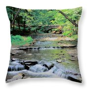 Wolf Creek Throw Pillow by Kathleen Struckle