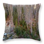 Wolf Creek Pass Forest Landscape Throw Pillow