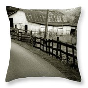 Wolf Creek Road Throw Pillow