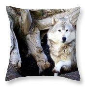 Wolf Den 1 Throw Pillow by Marty Koch