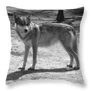 Wolf Pride Throw Pillow