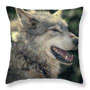 Wolf Rock Throw Pillow