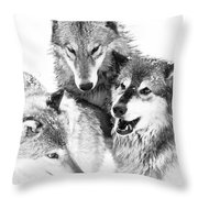 Wolf Triplets Throw Pillow