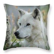 Wolf, White Throw Pillow