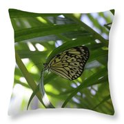 Wonderful Look At A Tree Nymph Butterfly In Foliage Throw Pillow
