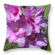 Wonderful Pink Gladiolus Throw Pillow
