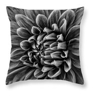 Wonderful Tones Dramantic Dahlia Throw Pillow