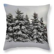 Wonderful Winter Throw Pillow