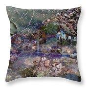 Wonderlight Throw Pillow