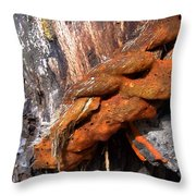 Wood And Iron Braid Image Throw Pillow