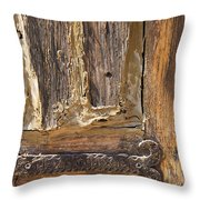 Wrinkled And A Little Rusty Throw Pillow