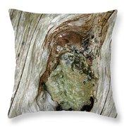 Wood And Stone, Cumbria, England Throw Pillow