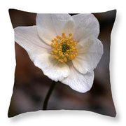 Wood Anemone 1 Throw Pillow