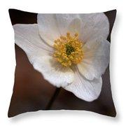 Wood Anemone 3 Throw Pillow