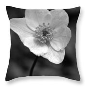 Wood Anemone 6 Throw Pillow