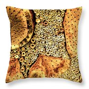 Insect Hotel #2 Throw Pillow