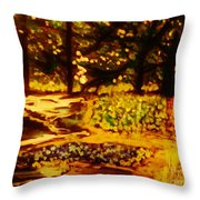 Wood At Night Throw Pillow by Marie Bulger