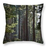 Wood Throw Pillow by Atul Daimari