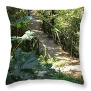 Wood Bridge On A Trail Throw Pillow