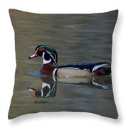 Wood Duck - Male Throw Pillow