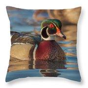 Wood Duck 4 Throw Pillow
