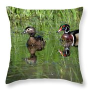 Wood Duck Couple Throw Pillow