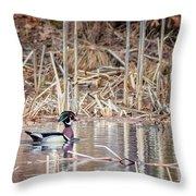 Wood Duck Drake 2018 Throw Pillow