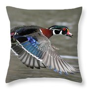 Wood Duck In Action Throw Pillow