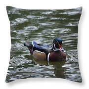 Wood Duck Male 20130924_258 Throw Pillow