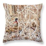 Wood Duck Mates 2018 Throw Pillow