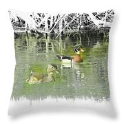 Wood Duck Pair Swimming. Throw Pillow