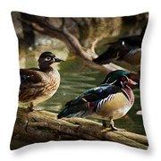 Wood Ducks Posing On A Log Throw Pillow