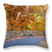 Wood Fence 1 Throw Pillow