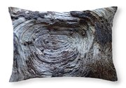 Wood Grain Of Buena Vista  Throw Pillow