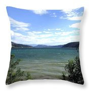Wood Lake In Summer Throw Pillow