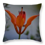 Wood Lily With Lake Superior In Background Throw Pillow