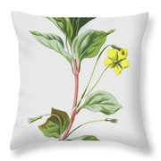 Wood Loosestrife Throw Pillow