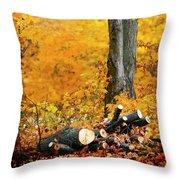Wood Pile In Autumn Throw Pillow