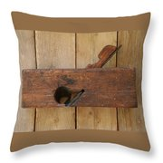 Wood Plane 3 Throw Pillow