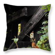 Wood Rail Underpass Throw Pillow