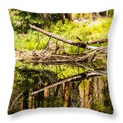 Wood Reflections Throw Pillow