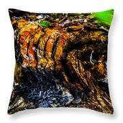 Wood Ridges Throw Pillow
