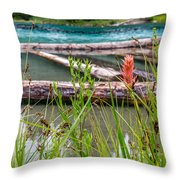 Wood River 07 Throw Pillow