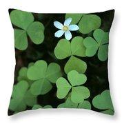 Wood Sorrel Flower Throw Pillow