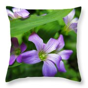 Wood Sorrel Throw Pillow
