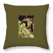 Wood-sprite Anders Zorn Throw Pillow